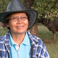 Plernpis Thongklad